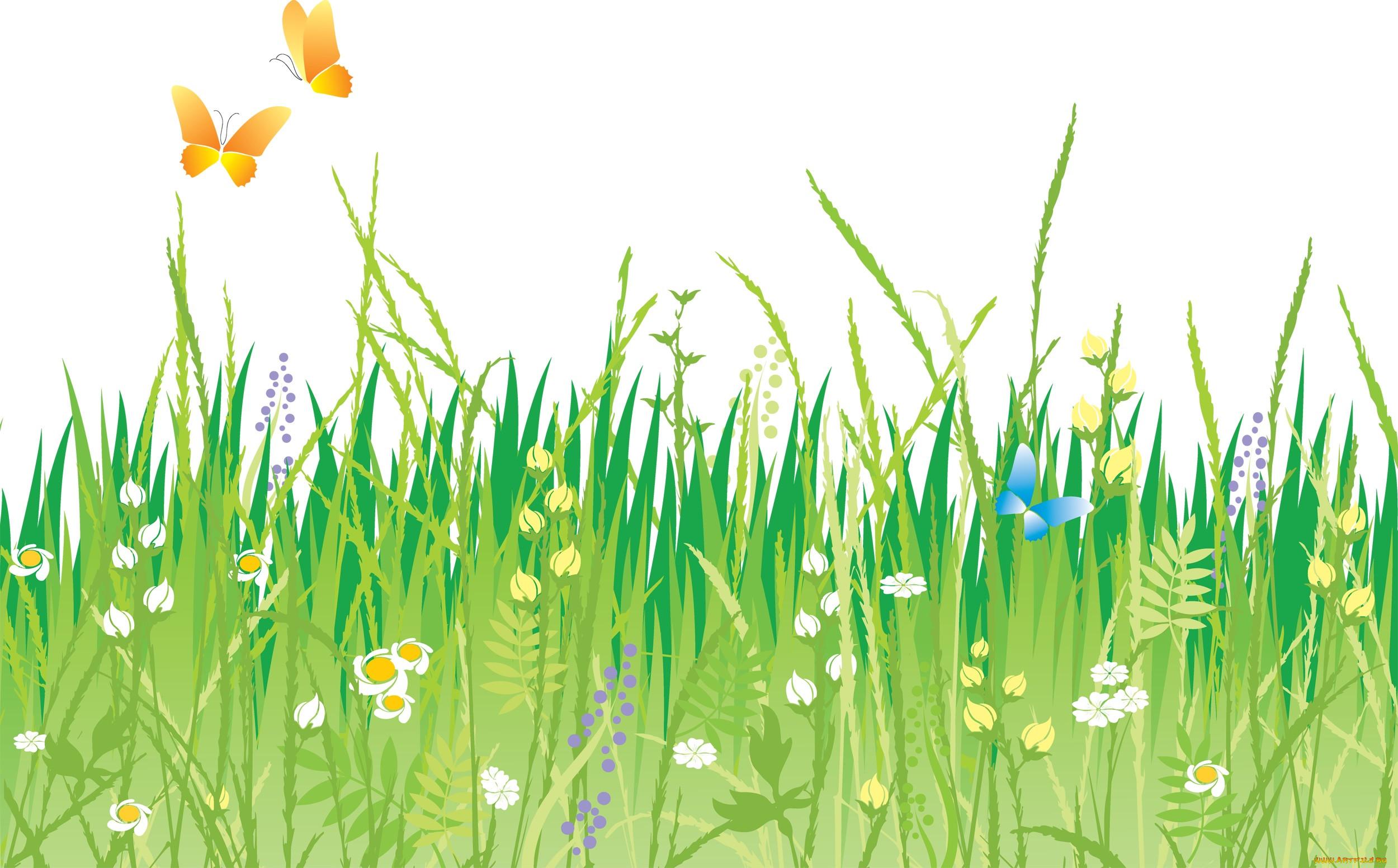 травы на прозрачном фоне картинка изготовление ловушек для